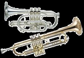 Cornet &Trumpet