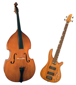 Double bass & Electric bass